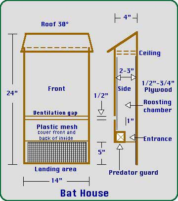 Wd laz where to get bat house plans pdf for Steps to building your own home